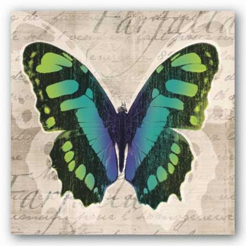 Butterflies II by Tandi Venter