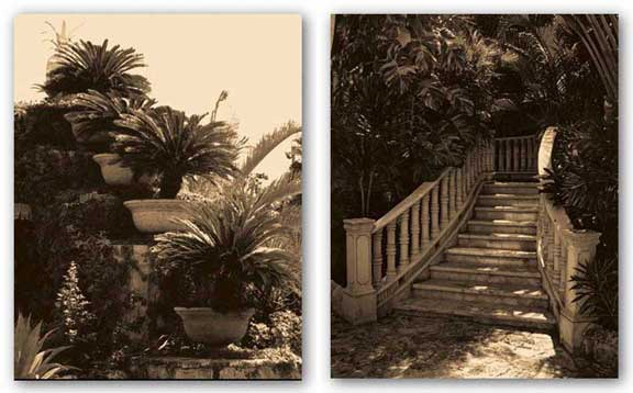 Garden Staircase and Paradise Garden Set by Alicia Soave