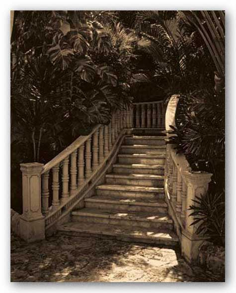 Garden Staircase by Alicia Soave