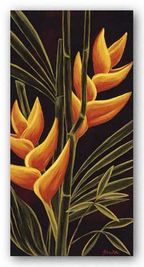 Heliconia by Yvette St. Amant
