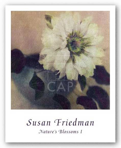 Nature's Blossoms I by Susan Friedman