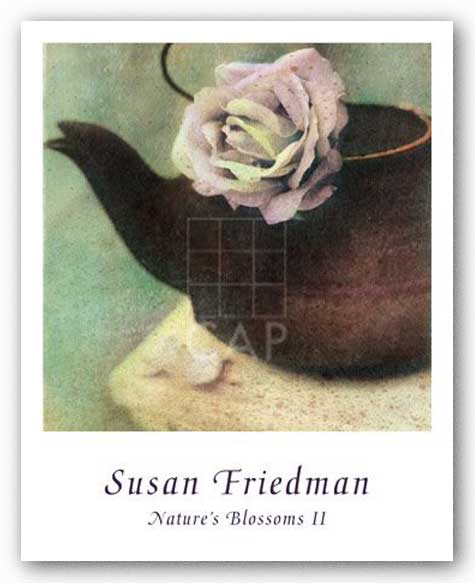 Nature's Blossoms II by Susan Friedman
