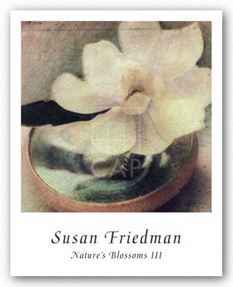 Nature's Blossoms III by Susan Friedman