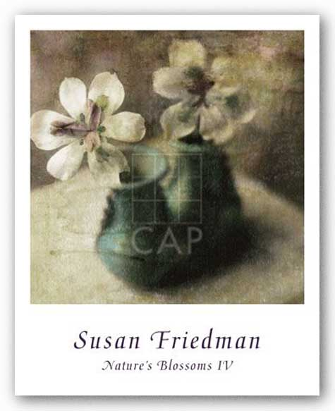 Nature's Blossoms IV by Susan Friedman