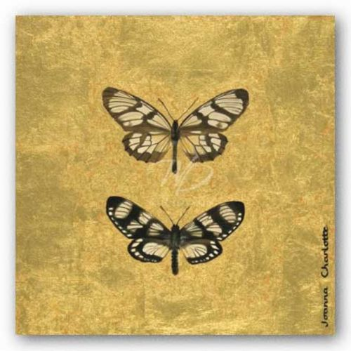 Pair of Butterflies on Gold by Joanna Charlotte