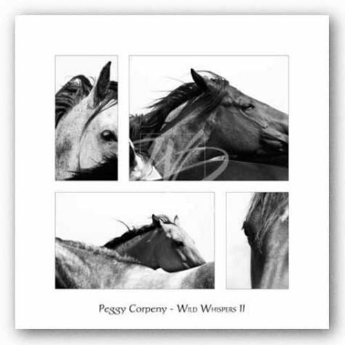 Wild Whispers II by Peggy Corpeny