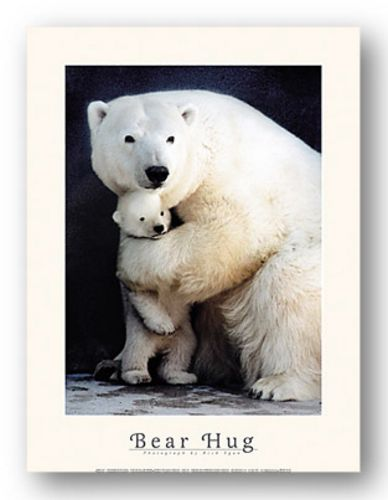 Bear Hug by Rick Egan