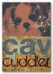 Cavalier Cuddler by M.J. Lew