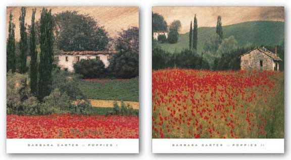 Poppies Set by Barbara Carter