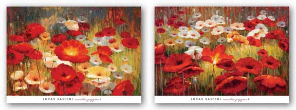 Meadow Poppies Set by Lucas Santini