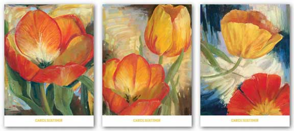 Summer Tulips Set by Carol Buettner