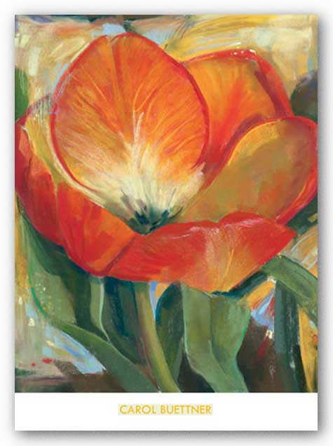 Summer Tulips I by Carol Buettner