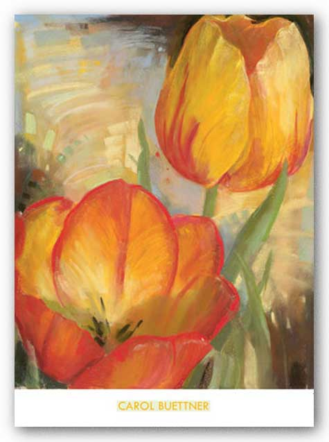 Summer Tulips II by Carol Buettner