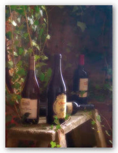 Wine Cellar II by Donna Geissler