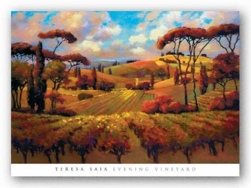 Evening Vineyard by Teresa Saia