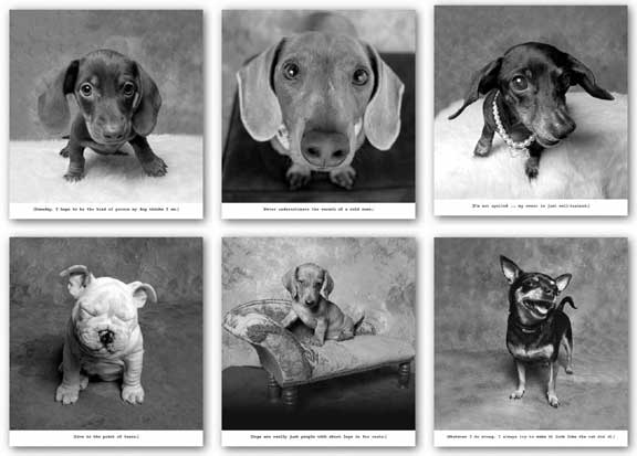 Dogs Set (Six Prints) by Ginger DeLater