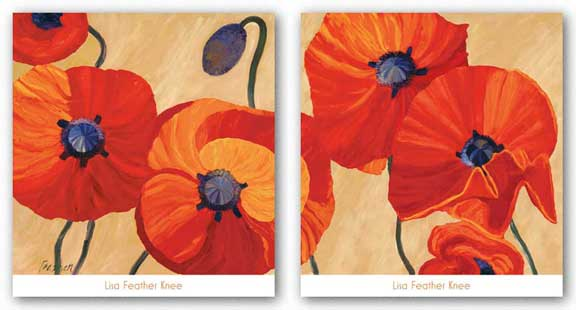 Oriental Poppy Set by Lisa Feather Knee