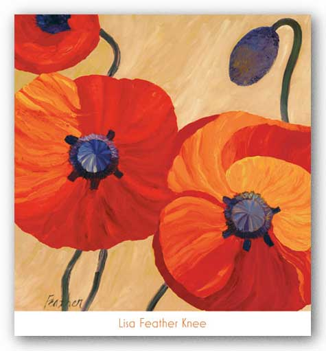 Oriental Poppy Left by Lisa Feather Knee