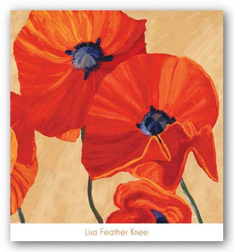 Oriental Poppy Right by Lisa Feather Knee