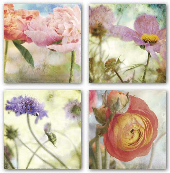 Floral Set (Four Prints) by Donna Geissler