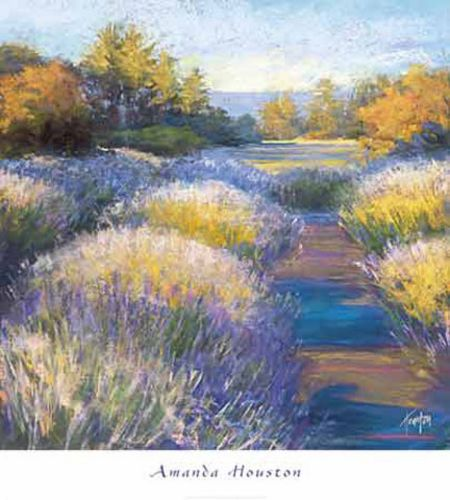Lavender 2 by Amanda Houston