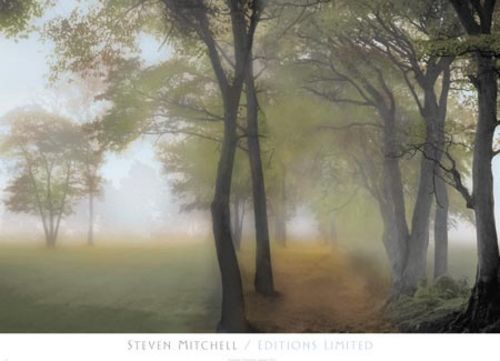 Misty Path by Steven Mitchell