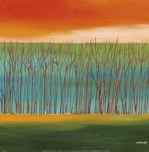 Prairie Abstract 5 by Mary Johnston