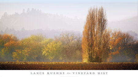 Vineyard Mist by Lance Kuehne
