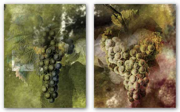 Grape Set by Miguel Paredes