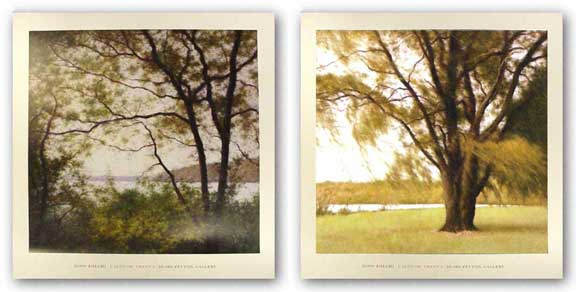 Lakeside Trees Set by John Folchi