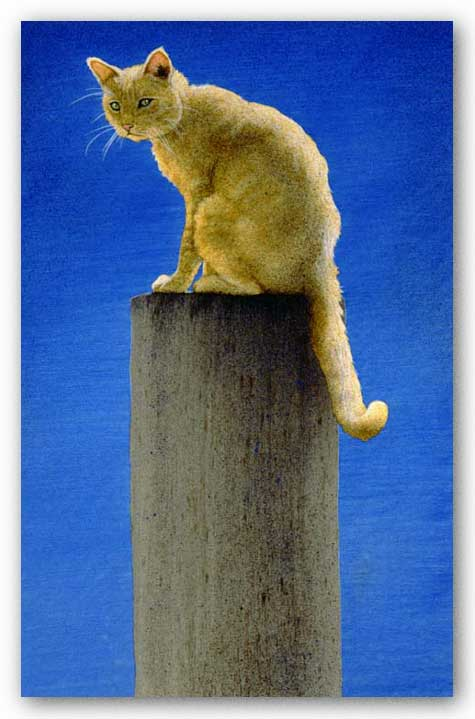 Pole Cat by Will Bullas