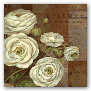 Patina Ranunculus by Pamela Gladding