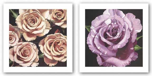 Rose and Roses Set by Elizabeth Hellman