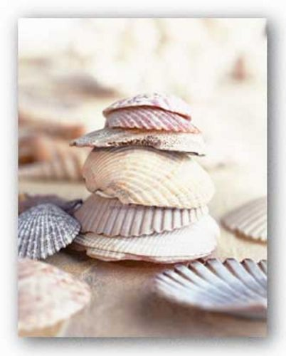 Seaside Treasures by Hallmark Collection