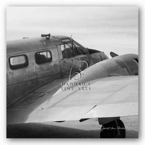 Vintage Flight II by Janet Van Arsdale