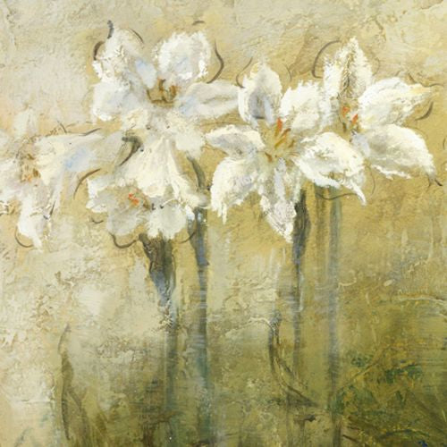 Study in White II by Christine Stewart