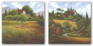 Olives and Poppies - The Road Home Set by Vivien Rhyan