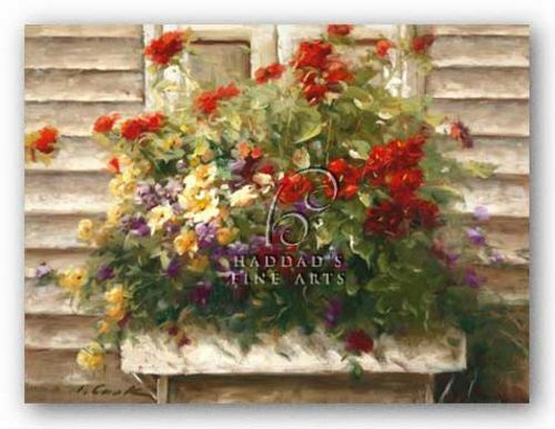 Cape Cod Window Box by Ian Cook