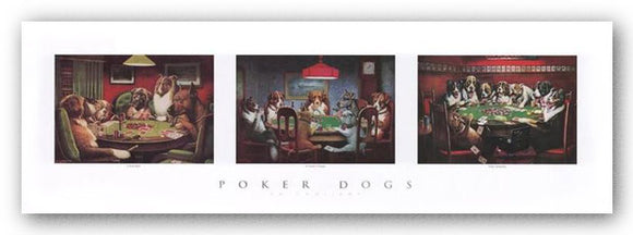 Poker Dogs by C.M. Coolidge