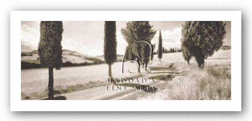Road Through Tuscany by Michael Hudson