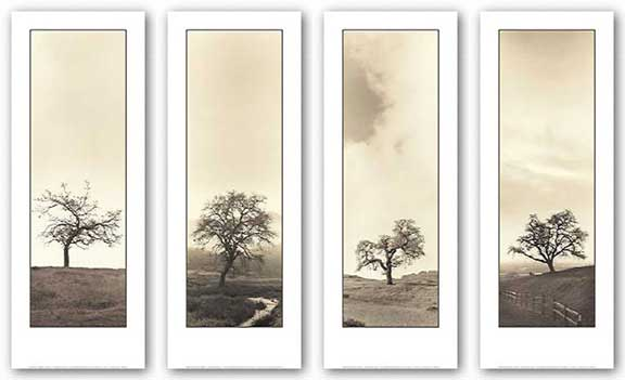 Oak Tree Set (Four Prints) by Alan Blaustein