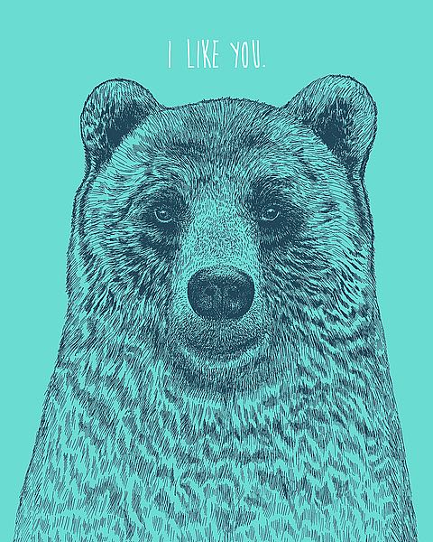 I Like You Bear by Rachel Caldwell