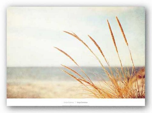 Warm Breeze by Carolyn Cochrane