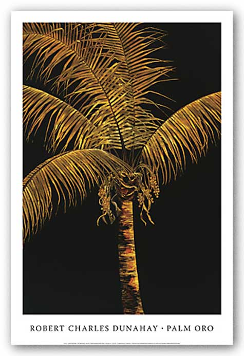 Palm Oro by Robert Charles Dunahay