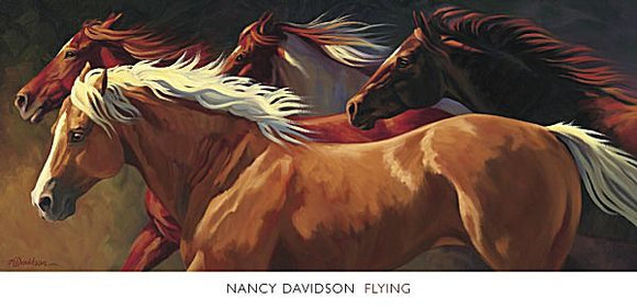 Flying by Nancy Davidson