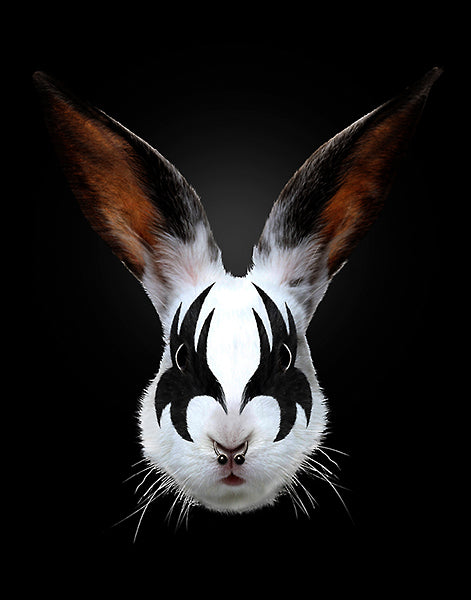 Rabbit Rocks (Kiss of a Rabbit) by Robert Farkas