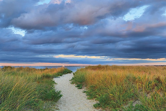 Jetties Beach Path by Katherine Gendreau
