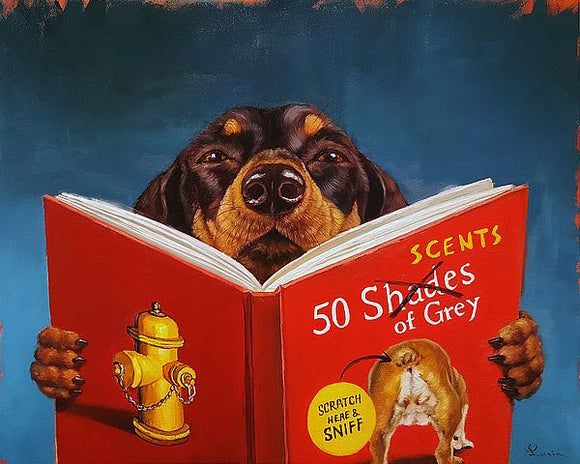 50 Scents of Grey by Lucia Heffernan