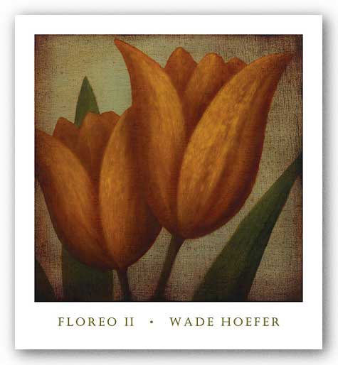 Floreo II by Wade Hoefer