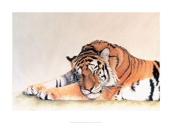 Sleeping Tiger by Jan Henderson